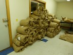 A large part of the 2012 clip is piled up against the wall in the CCNF Arena's fleece room. Each individual blanket was sheared off of the animals in a single piece, given a preliminary skirting, and then rolled up in the brown paper you see above. The fleeces will be opened and skirted further prior to processing or sending them to show.